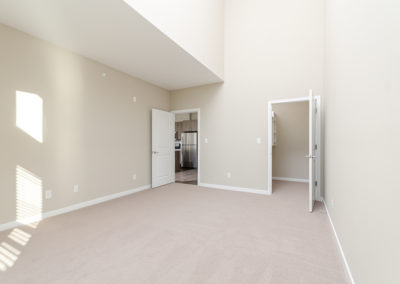 1 BR+ Den Apartment