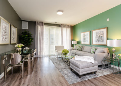 1BR model living area